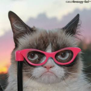 Grumpy Cat with Glasses
