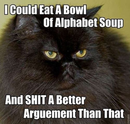 Alphabet Soup cat
