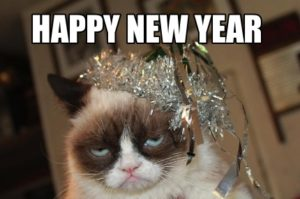 Happy-New-Year-Meme-Cat-300x199